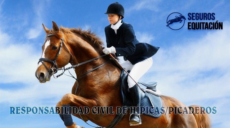 seguros para caballos. ACTIVIDADES HÍPICAS