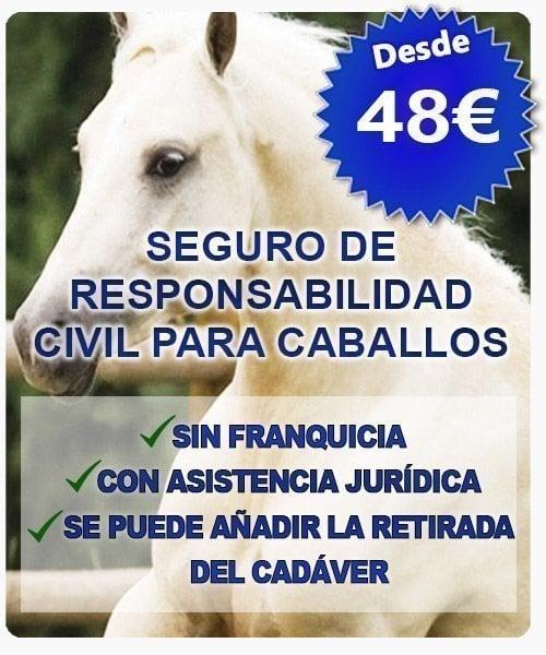 seguro responsabilidad civil para caballo 48euros