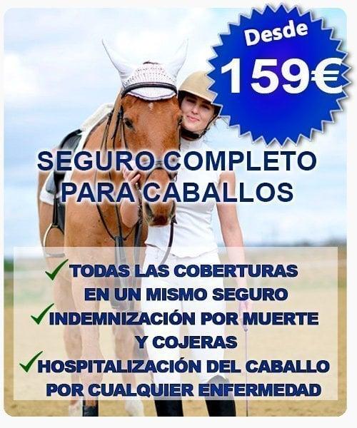 Seguro de responsabilidad civil completo para caballos