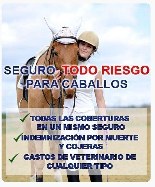 seguro todo riesgo para caballo
