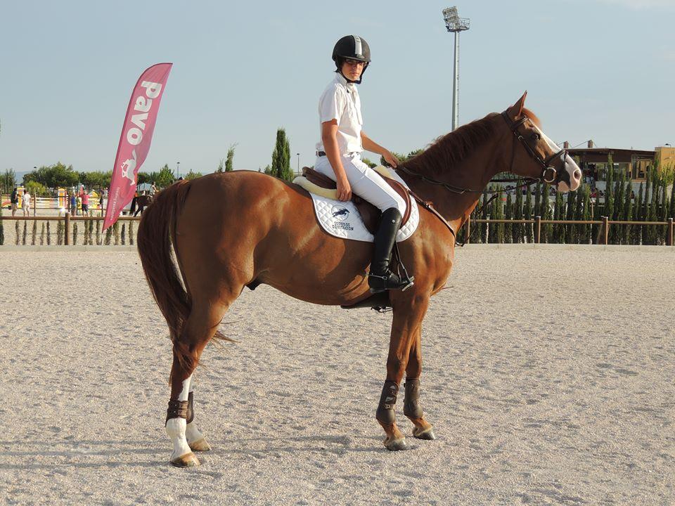 seguros equitación