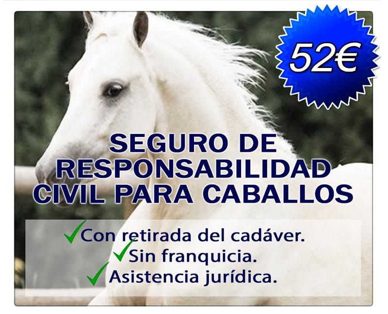 Seguro de responsabilidad civil para caballos por 52€
