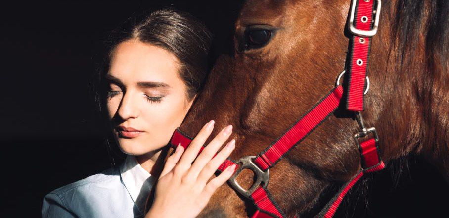 covid en caballos
