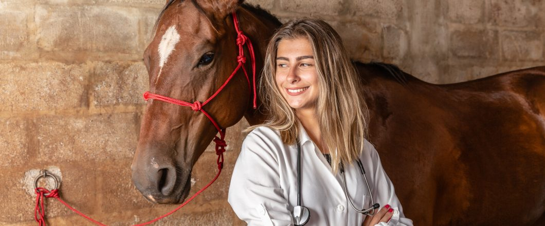seguro veterinario para caballos